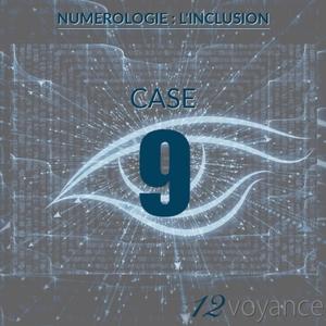 Nombre d'inclusion 9